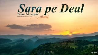 """Sara pe deal"" Tudor Gheorghe Instrumental Pian"