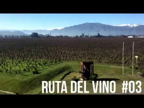 Chile, Ruta Del Vino #03