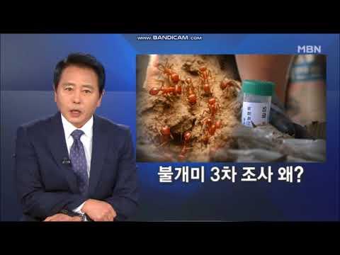 최일구어록3 (MBN 뉴스 8)