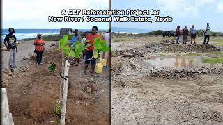 SGP St Kitts and Nevis combating land degradation on the New River and Coconut Walk Coastline