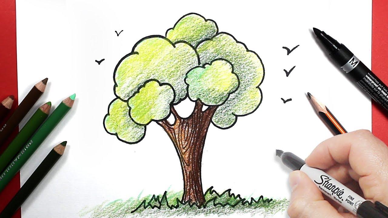 رسم شجرة بالرصاص والالوان للمبتدئين تعلم الرسم سهل Youtube