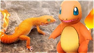 Top 10 Pokemon That ACTUALLY Exist In Real Life (Pokemon GO In Real Life)