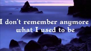 I Had This Thing (Lyrics) - Royksopp ft. Jamie Irrepressible