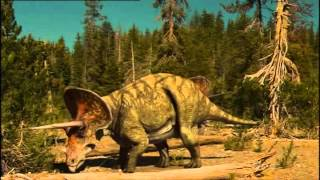 1 T-Rex vs Triceratops