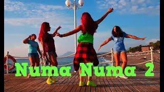 ♥ Numa Numa 2 ♥