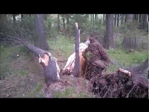 Ураган в Свердловской области 03.06.2017