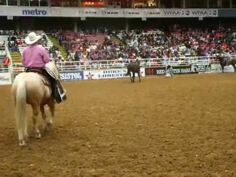Toby Logan Performance Calf Roping Mesquite 10 24 15