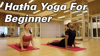 40-Minutes Yoga At Home For Beginner Based On Hatha Yoga Flow | Yograja | Yoga Hanoi Vietnam