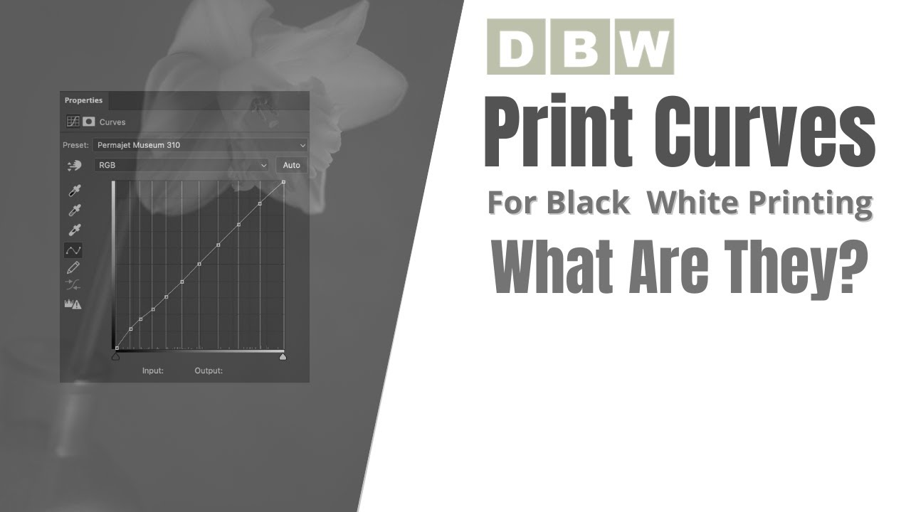 What Are Black & White Print Curves 1