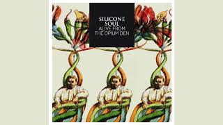 Silicone Soul - Time Mariner's Mirrour