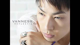 VANNESS - Little Things You Do