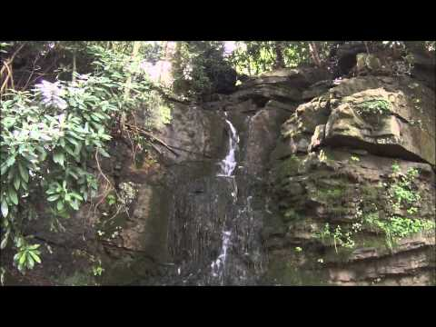 A Day at Connellsville on the GAP Trail