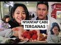 Download Mules Level Dewa, Nyantap Caroline Reaper - Cabe T