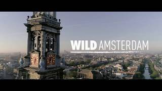 Wild Amsterdam - Official trailer with English subtitles