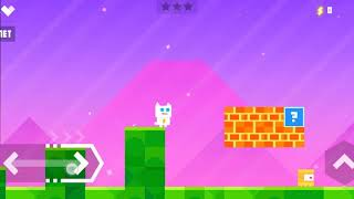 Super cat Game play