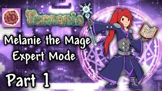 Terraria 1 3 Expert Mage Part 1 Our Character is EVIL 1 3 Let 39 s Play