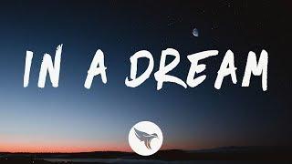 Man Cub feat. SVRCINA - In A Dream (Lyrics)