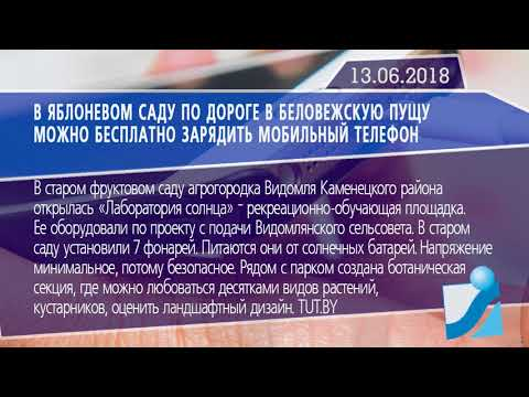 Новостная лента Телеканала Интекс 13.06.18.
