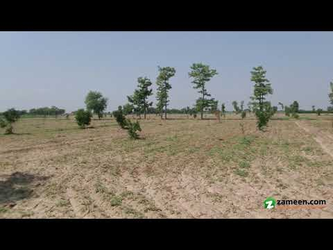 176 Kanal  AGRICULTURAL LAND IS AVAILABLE FOR SALE IN TOBA TEK SINGH