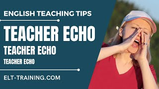 Teacher Echo and IRF