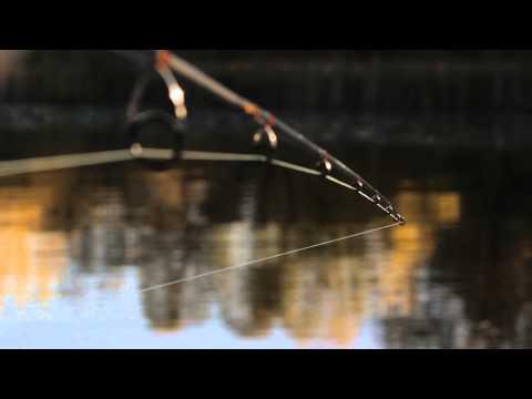 шнур для ловли щуки на спиннинг