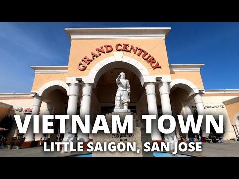 Walking around San Jose's VIETNAM TOWN while talking to a camera!!  -Casual San Jose VLOG