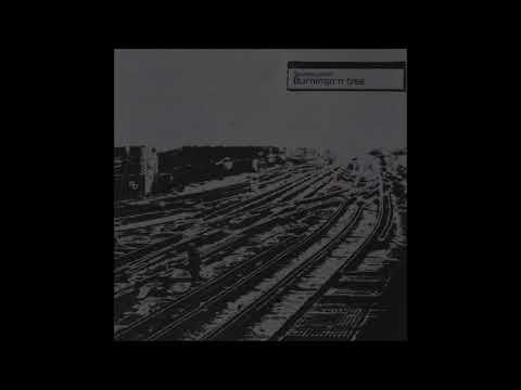 Burningn'n Tree - Squarepusher (full album)