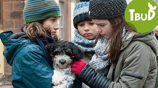 Tiere bis unters Dach - Ein Freund fürs Leben (Folge 75)   Tiere bis unters Dach   SWR Kindernetz