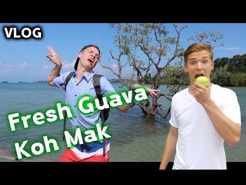 Fresh Guava: Koh Mak