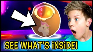 How To See What PET is Inside Your EGG in Adopt Me!! Can We Get These TikTok Hacks To Work?!