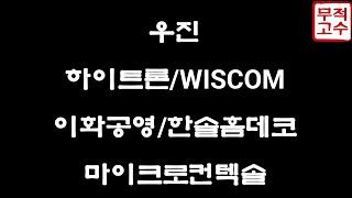 우진 / 하이트론 / WISCOM / 이화공영 / 한솔…