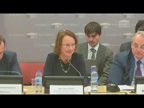 Audition de Céline Gauer, Secrétaire générale adjointe de la Commission Européenne
