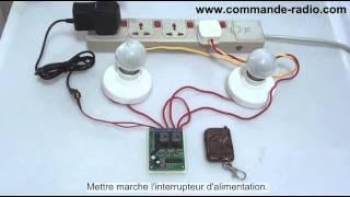 Kit Commande de Moteur Avec Émetteur Récepteur Momentanée Radio 9V 12V 24V 2 Canaux
