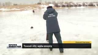 Стрит-фишинг: Graphiteleader Finezza косит городского хищника и траву в Нижнем Новгороде