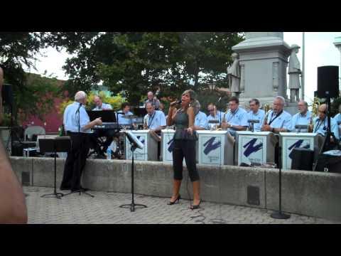 DIANNE PALMER sings