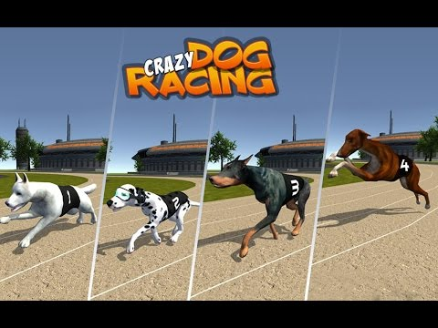 Dog Crazy Race Simulator offical traile androd HD game Play