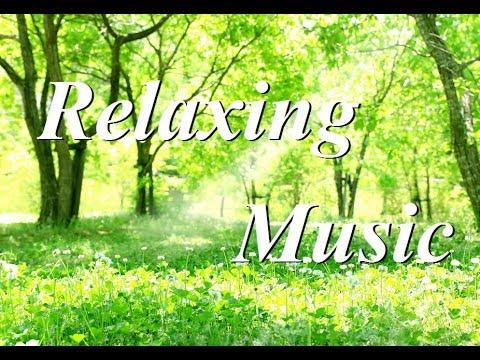 の 音楽 朝