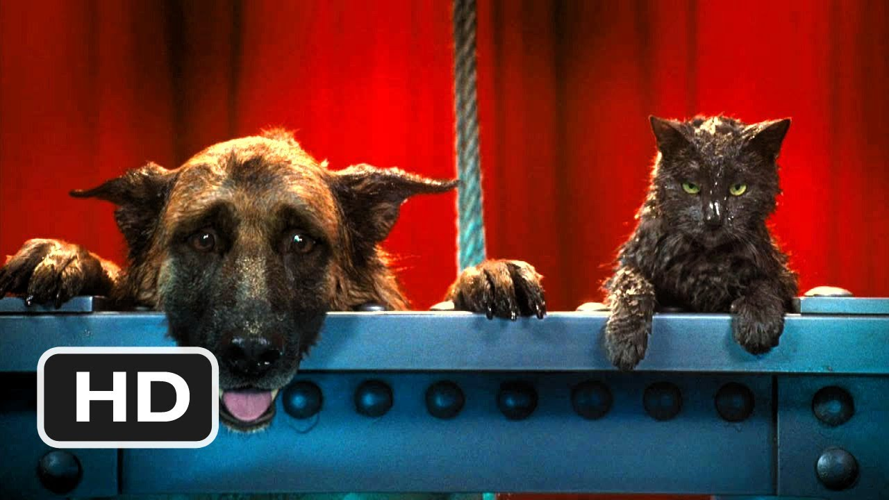 Cats \u0026 Dogs The Revenge of Kitty Galore 7 Movie CLIP , I Think I Like You  (2010) HD