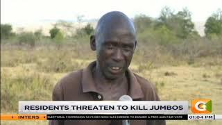 Kerio valley residents decry elephant invasion