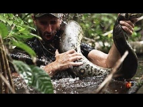 giant anaconda eats man alive-#20
