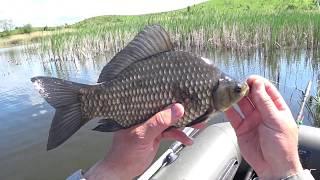 Риболовля в селі Русів