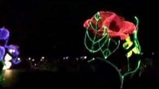 エレクトリカル パレード ドリームライツ Electrical Parade Dreamlights #1