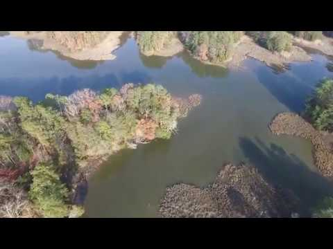 98 Acres of Waterfront Land in Isle of Wight County VA!