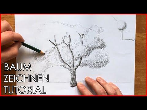 Baum Zeichnen Bleistift Schritt Für Schritt Zum