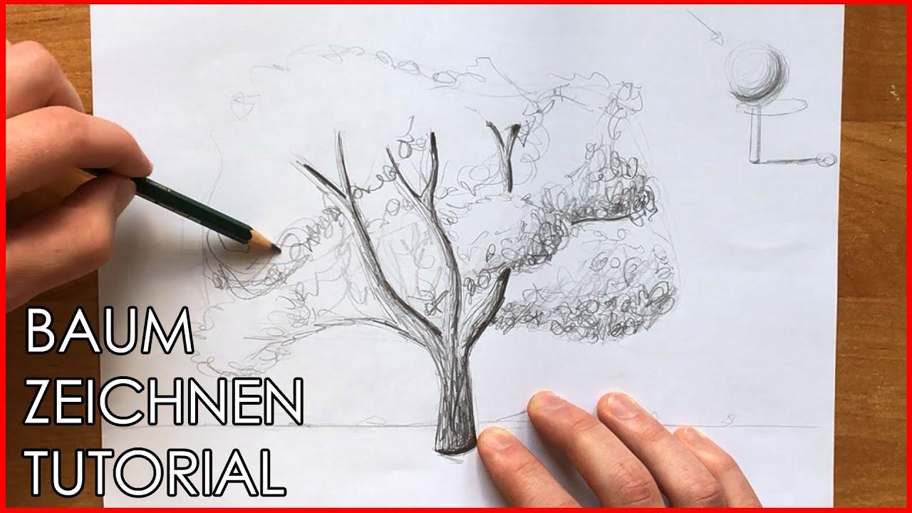 Kamille Mit Bleistift Zeichnen Lernen Tutorial Dekoking