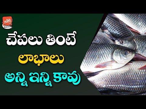 Fish Benefits For Health And Skin | Fish Side Effects | Latest Health Tips Telugu | YOYO TV Health thumbnail
