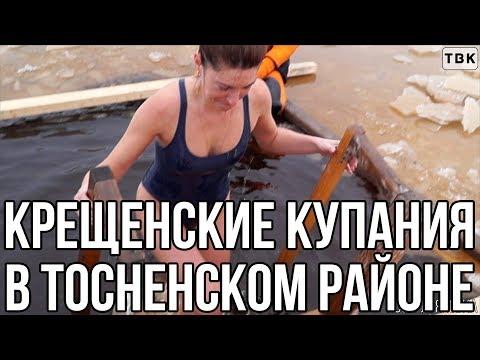 Крещенские купания в Тосненском районе