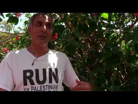 Promotion for Run 4 Palestine,Perth  2017, Roots Tv