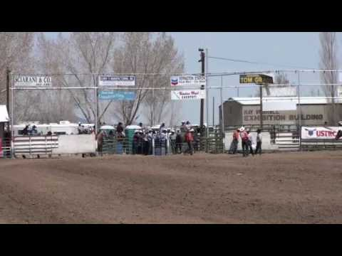 Team roping accident