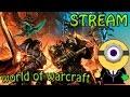 Stream World Of Warcraft Интервью с Кодексом куратором Logon 3 Wowcircle mp3
